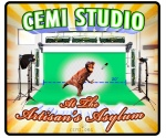 CEMI Studio at the Artisan's Asylum